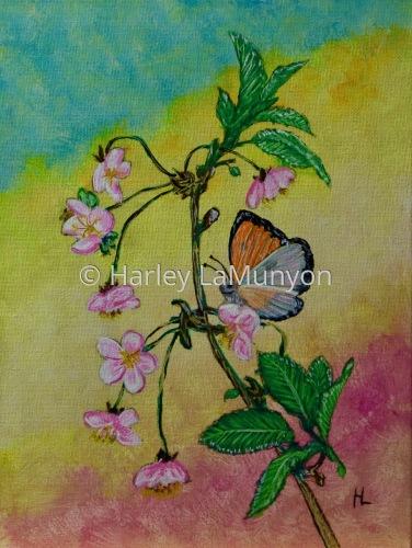 Springtime Butterfly #52