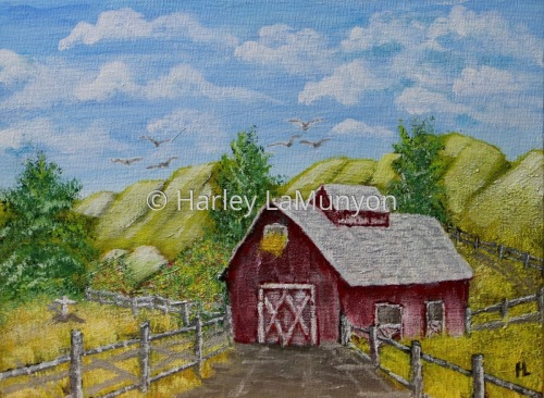 Country Barn #35