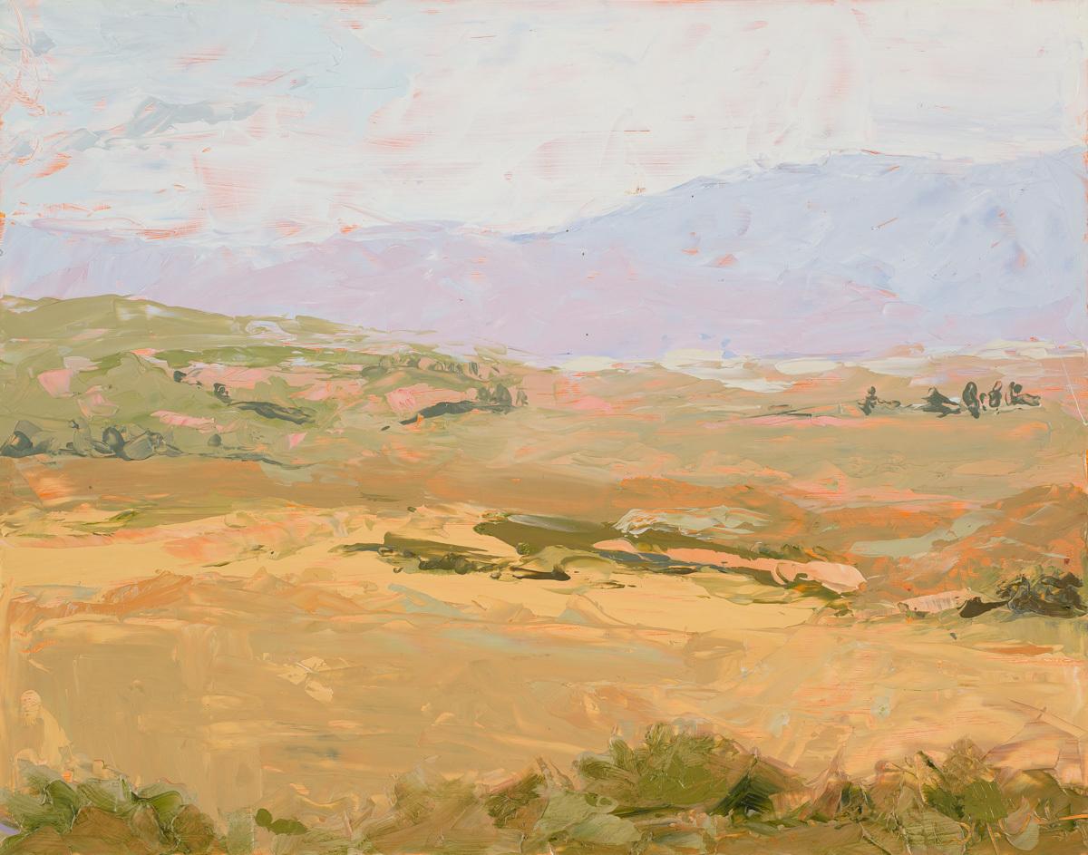 Endless Mesa (large view)