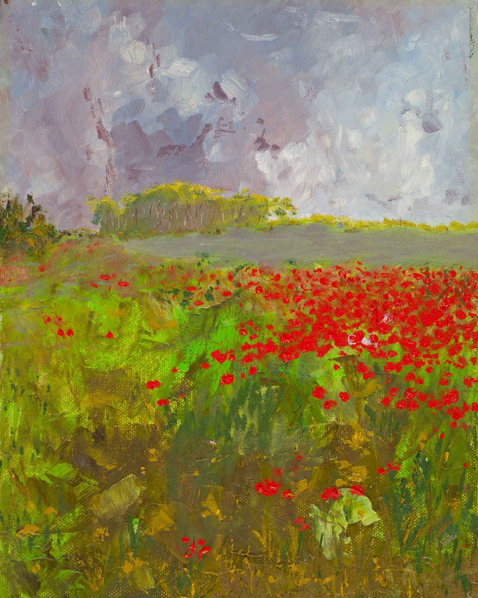 Vision of Poppies (large view)