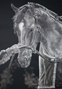 Race Horse (Sold $3000) (thumbnail)