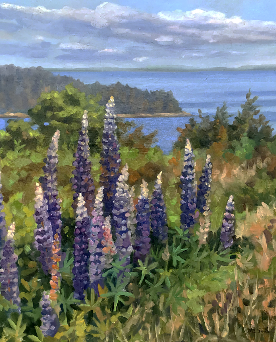 Lupin On Eagle Island (large view)