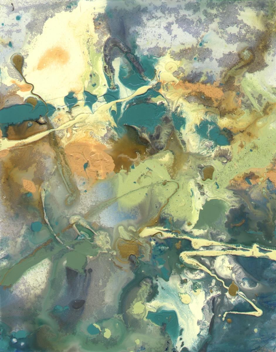 Life Aquatic #1 (large view)