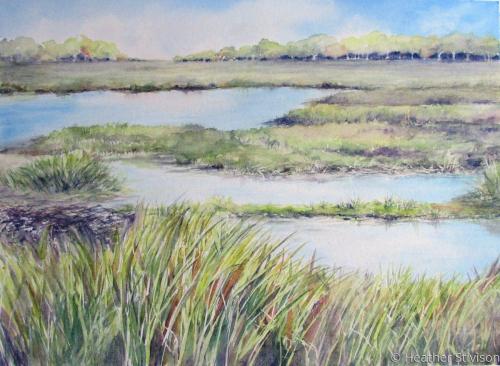 Padanaram Salt Marsh