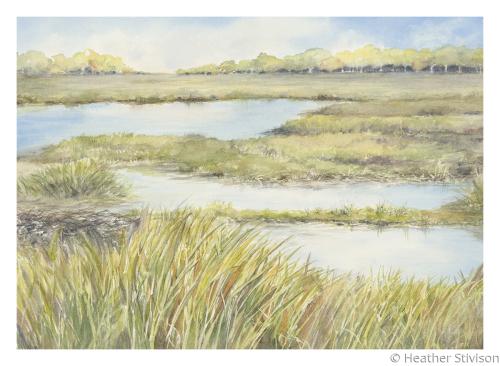 Giclee Card-Padanaram Salt Marsh