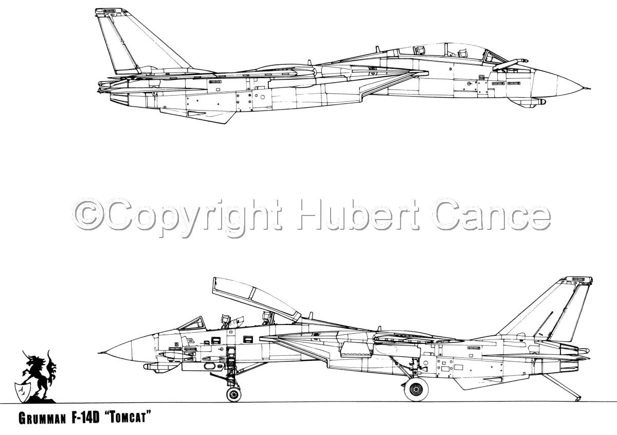 """Grumman F-14D """"Tomcat"""" (large view)"""