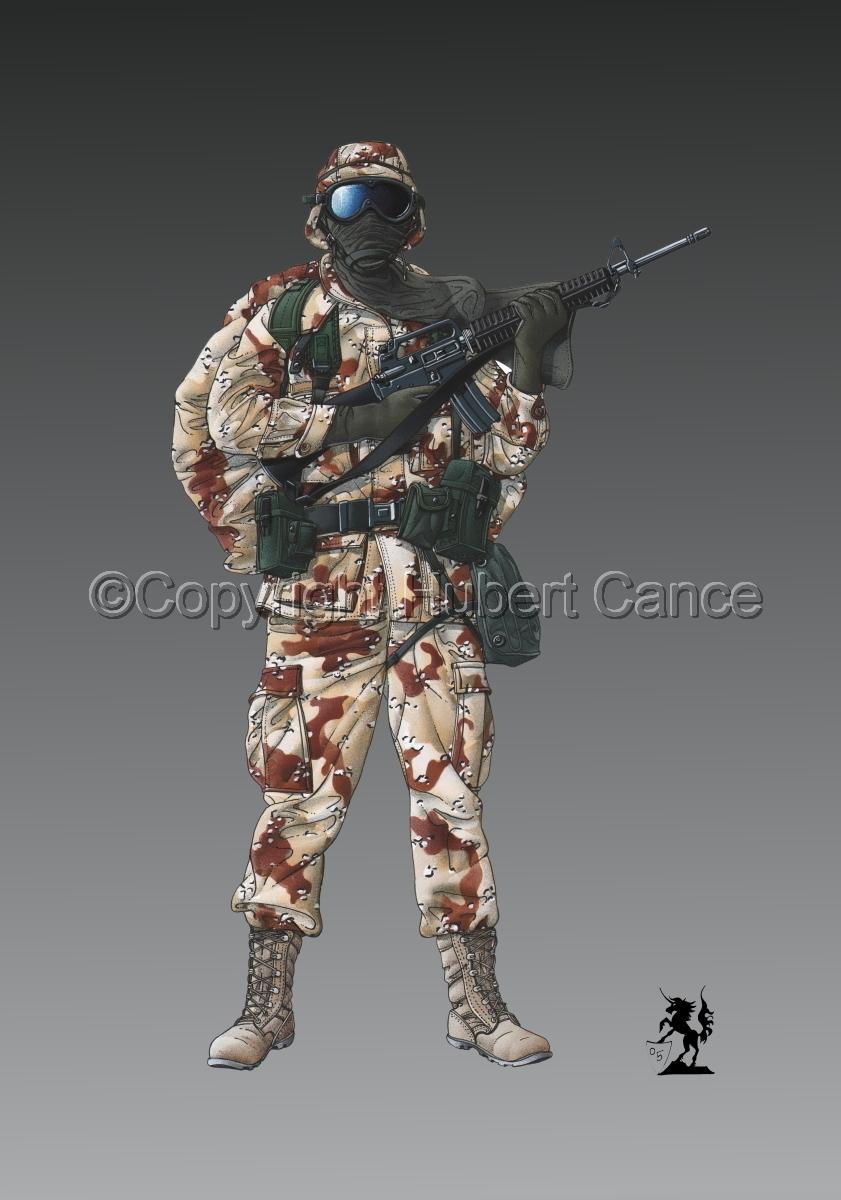US GI in Iraq (Gulf War 1) #1 (large view)
