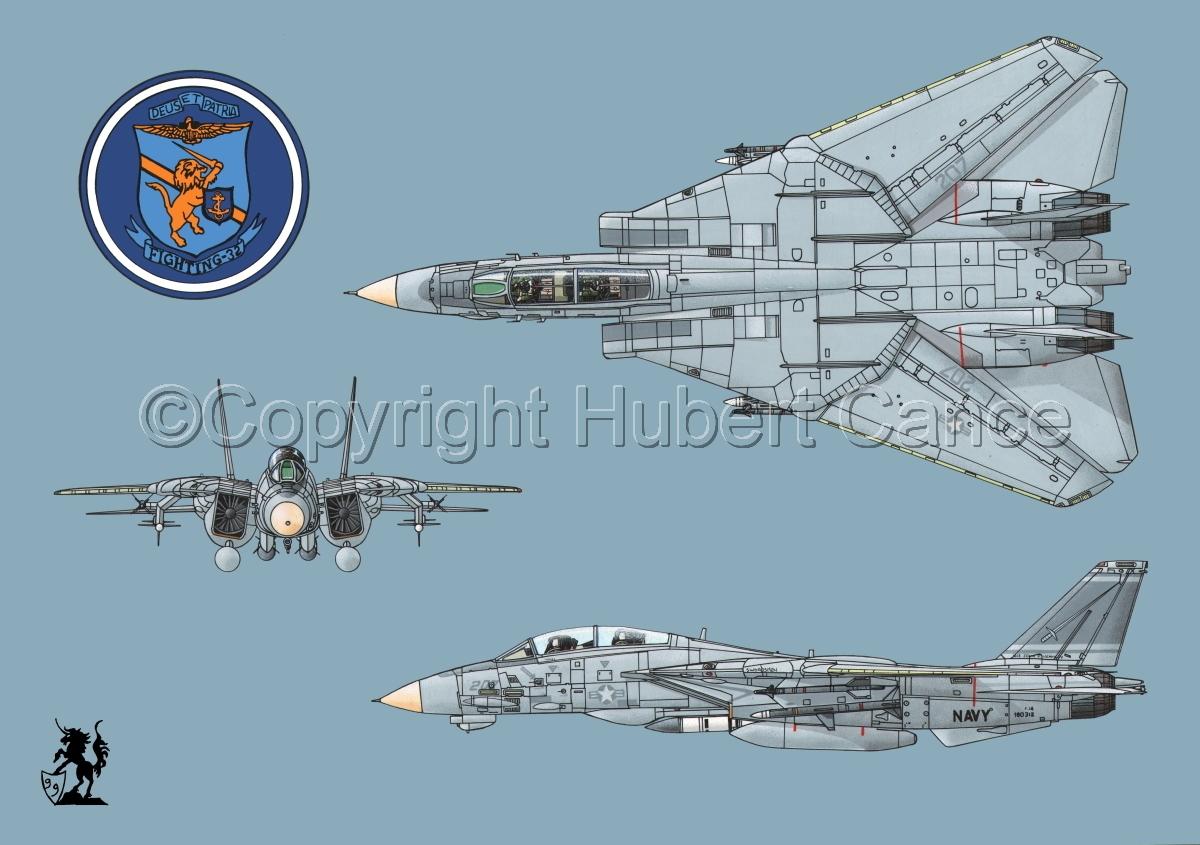 """Grumman F-14A """"Tomcat"""" #2 (large view)"""