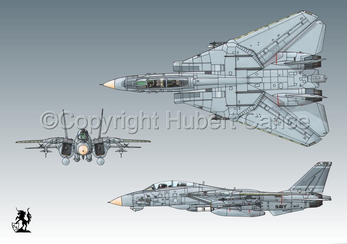 "Grumman F-14A ""Tomcat"" #1bis.3 (large view)"