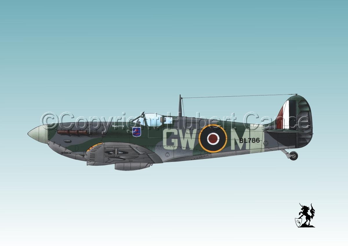 "Supermarine ""Spitfire"" Mk.Vb #1bis.3 (large view)"