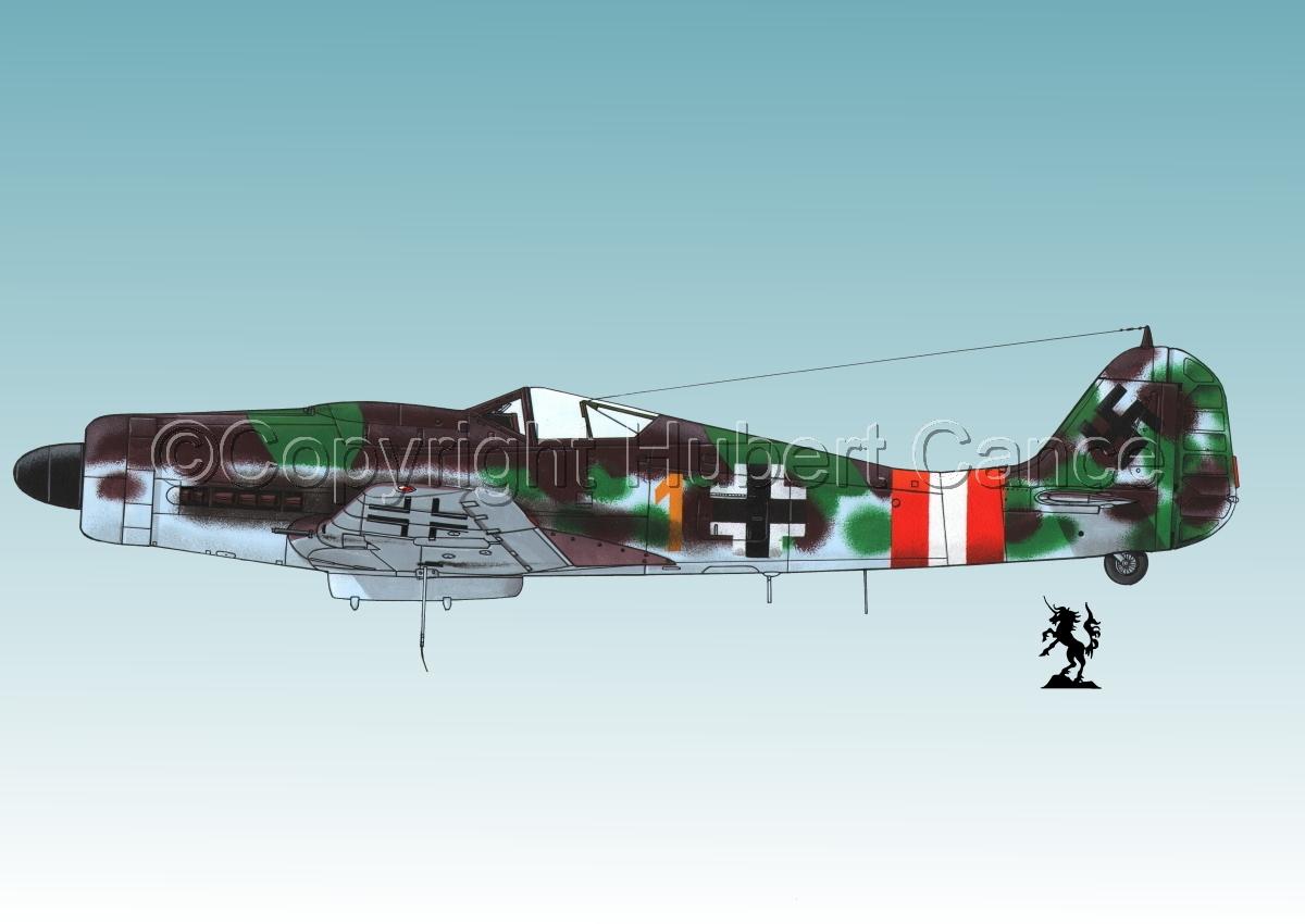 "Focke-Wulf Fw 190D-9 ""Dora""#1.3 (large view)"