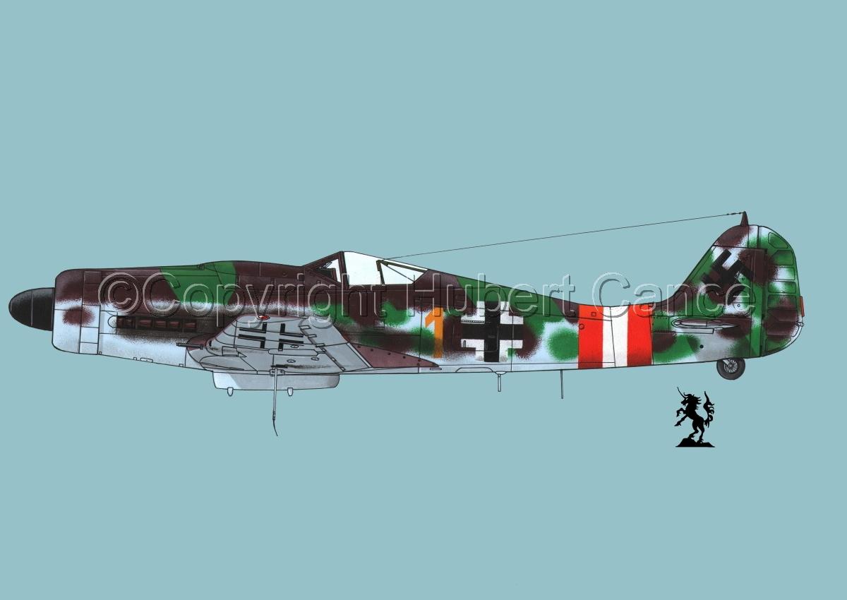 "Focke-Wulf Fw 190D-9 ""Dora""#1.2 (large view)"
