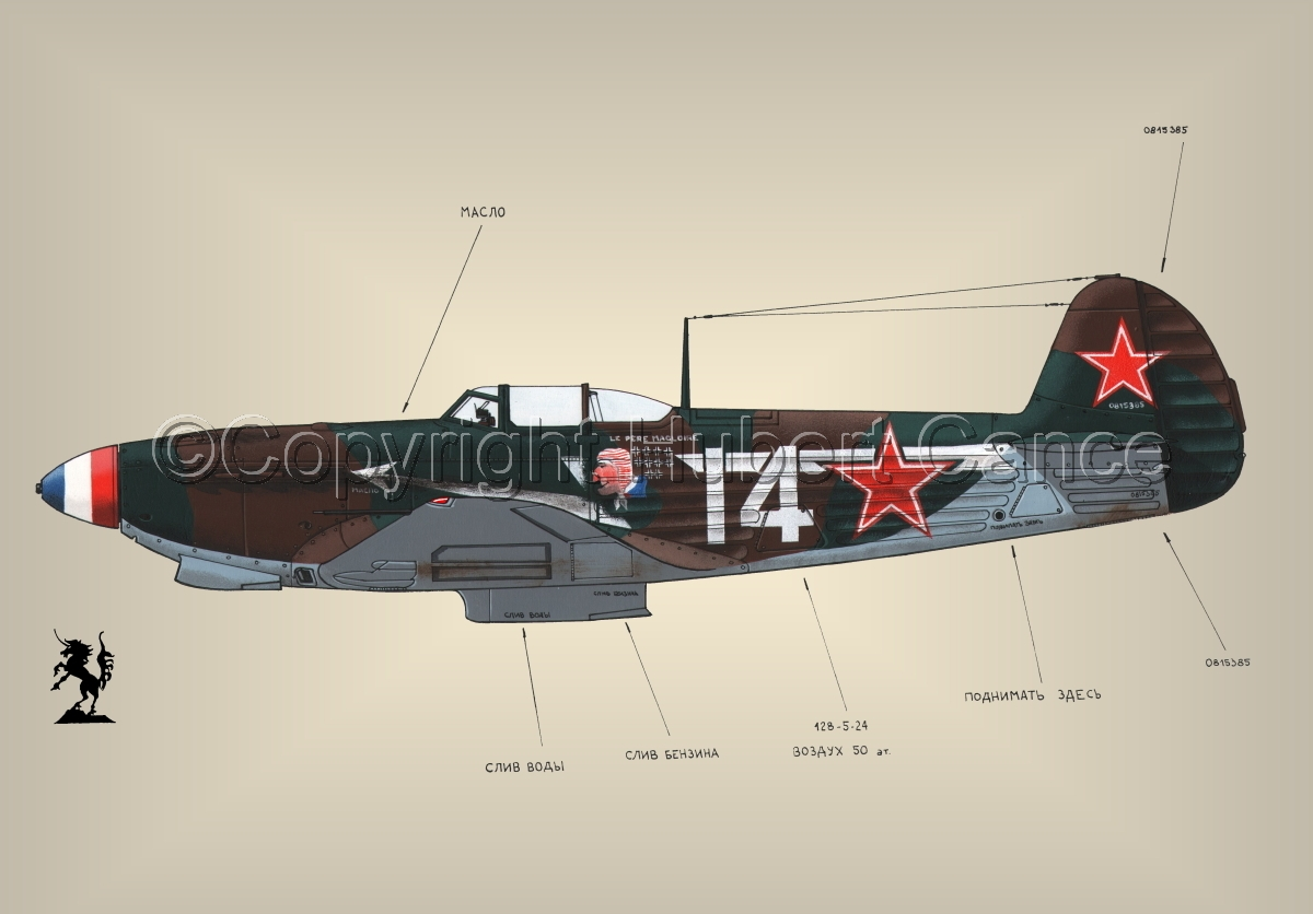 Yakovlev Yak-9D #1.3 (large view)