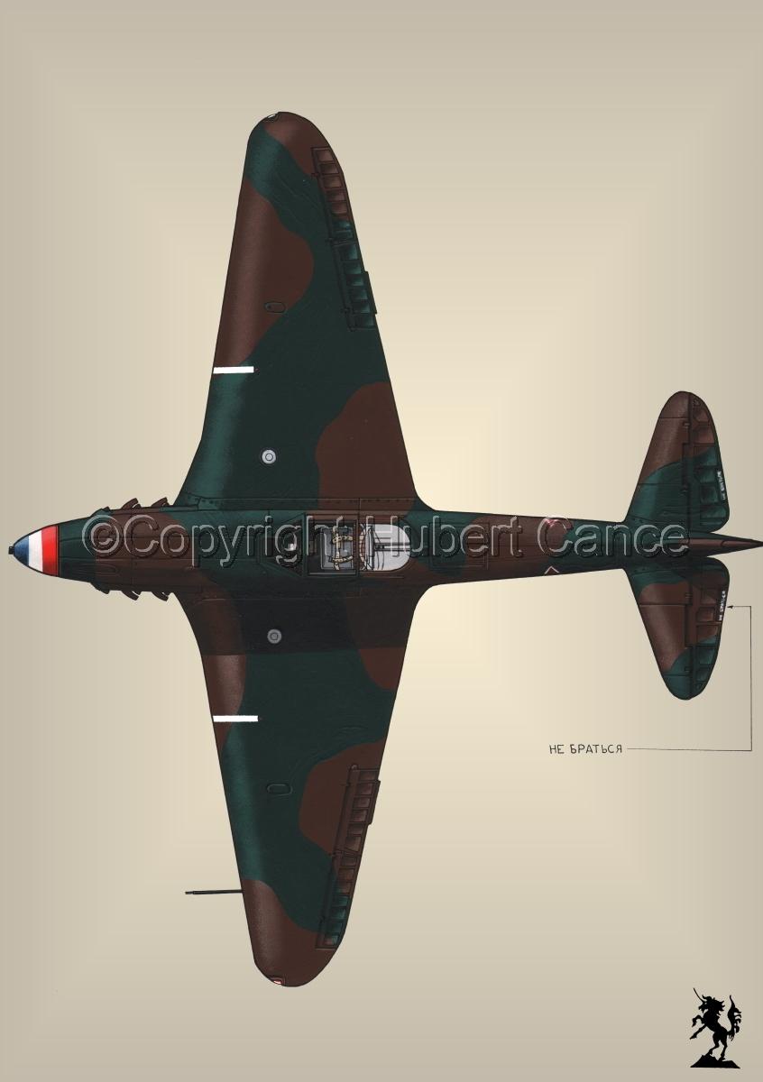 Yakovlev Yak-9D #3.3 (large view)