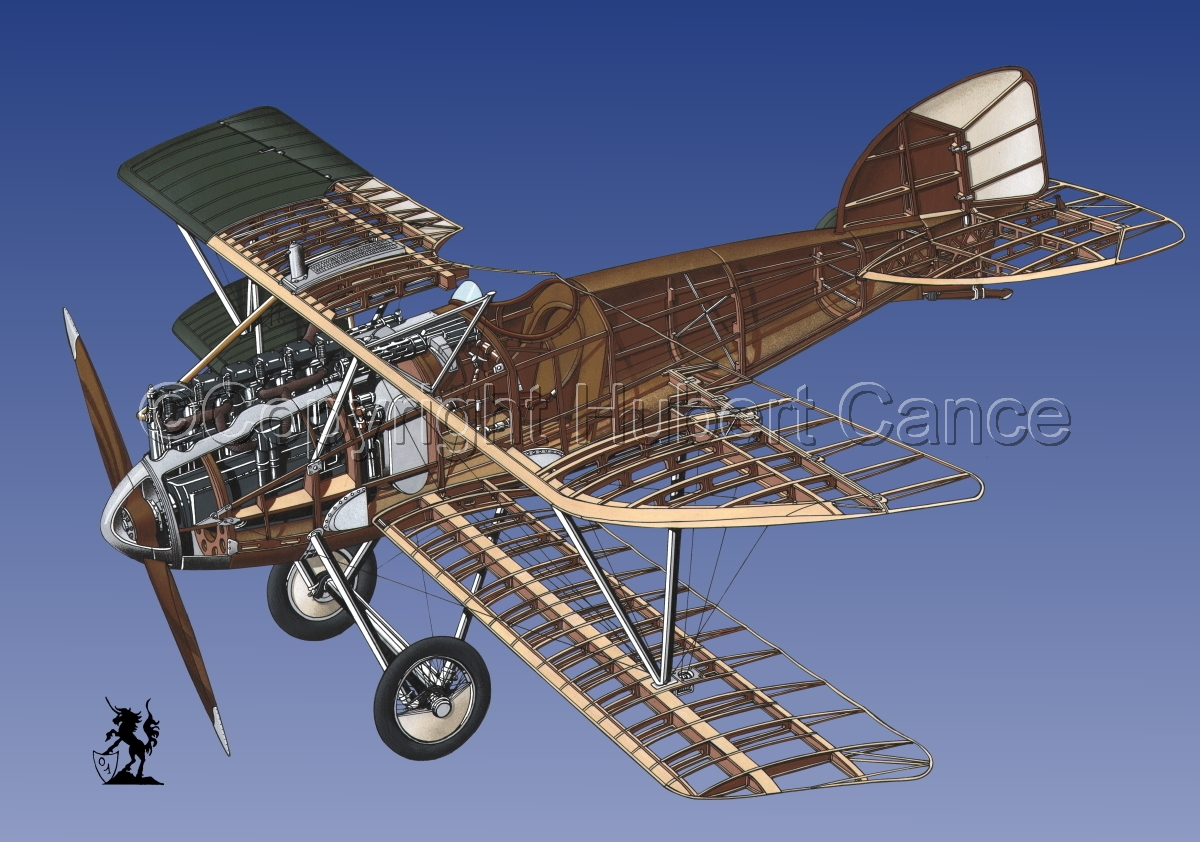 Albatros D.III #1.3 (large view)