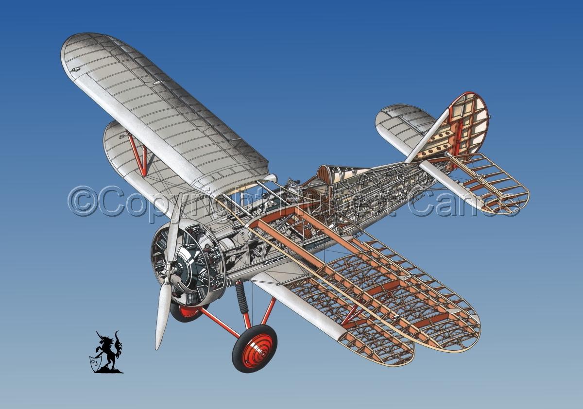 Polikarpov I.5 #3 (large view)