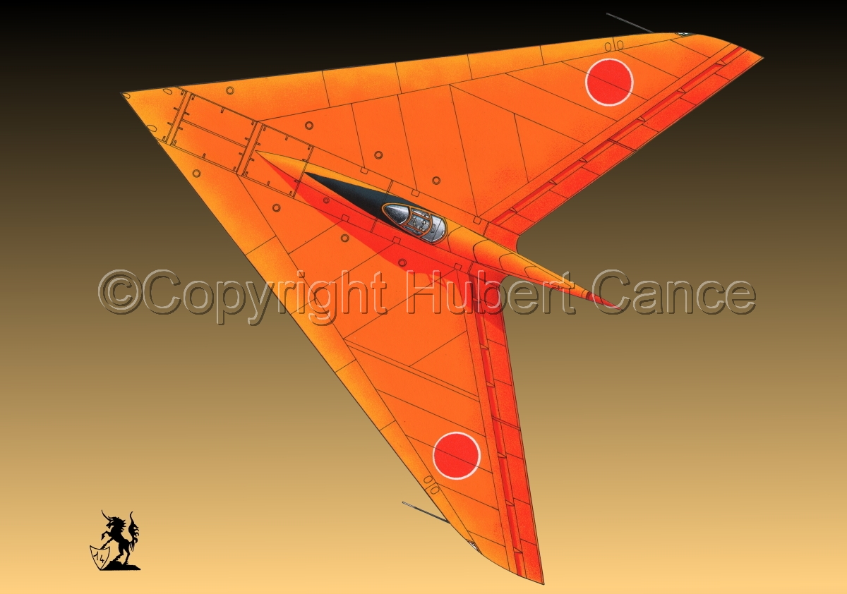 Horten Ho XIIIb Japanese Trainer Upper View (#1.3) (large view)
