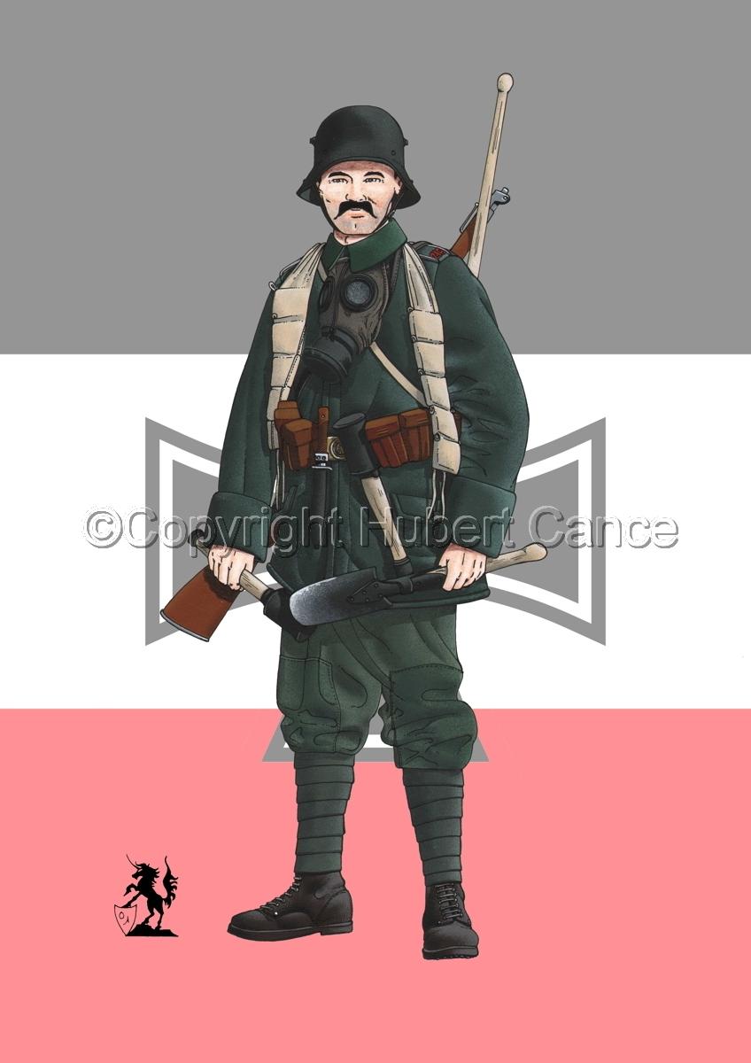 Stosstruppen, 5. Sturm-Bataillon, 1917 (Flag) (large view)