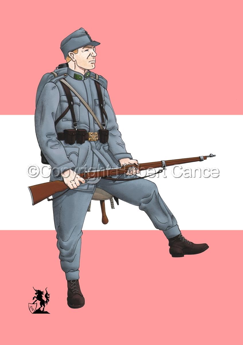 2nd. Imperial Austrian Landwehr Regiment (1914) (Flag #1) (large view)