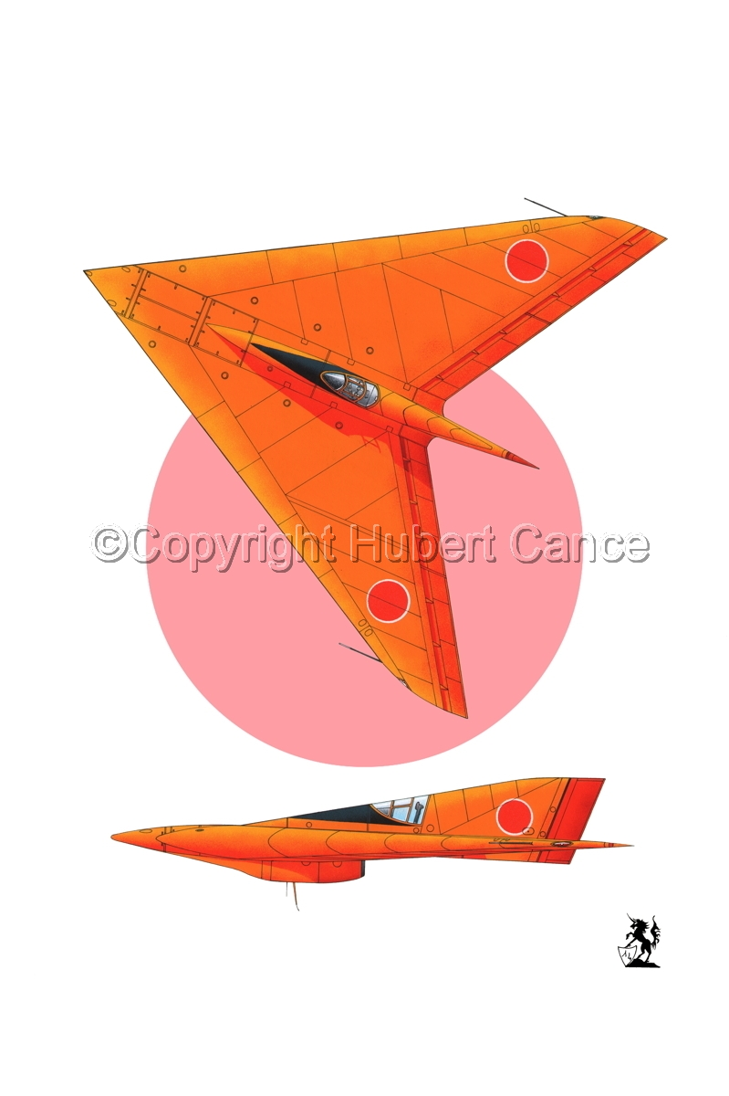 Horten Ho XIIIb Japanese Trainer 2-Views (Flag #1) (large view)