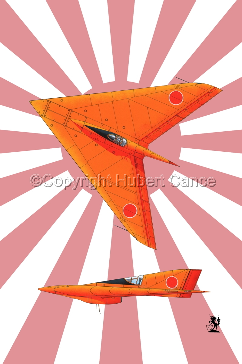 Horten Ho XIIIb Japanese Trainer 2-Views (Flag #2) (large view)