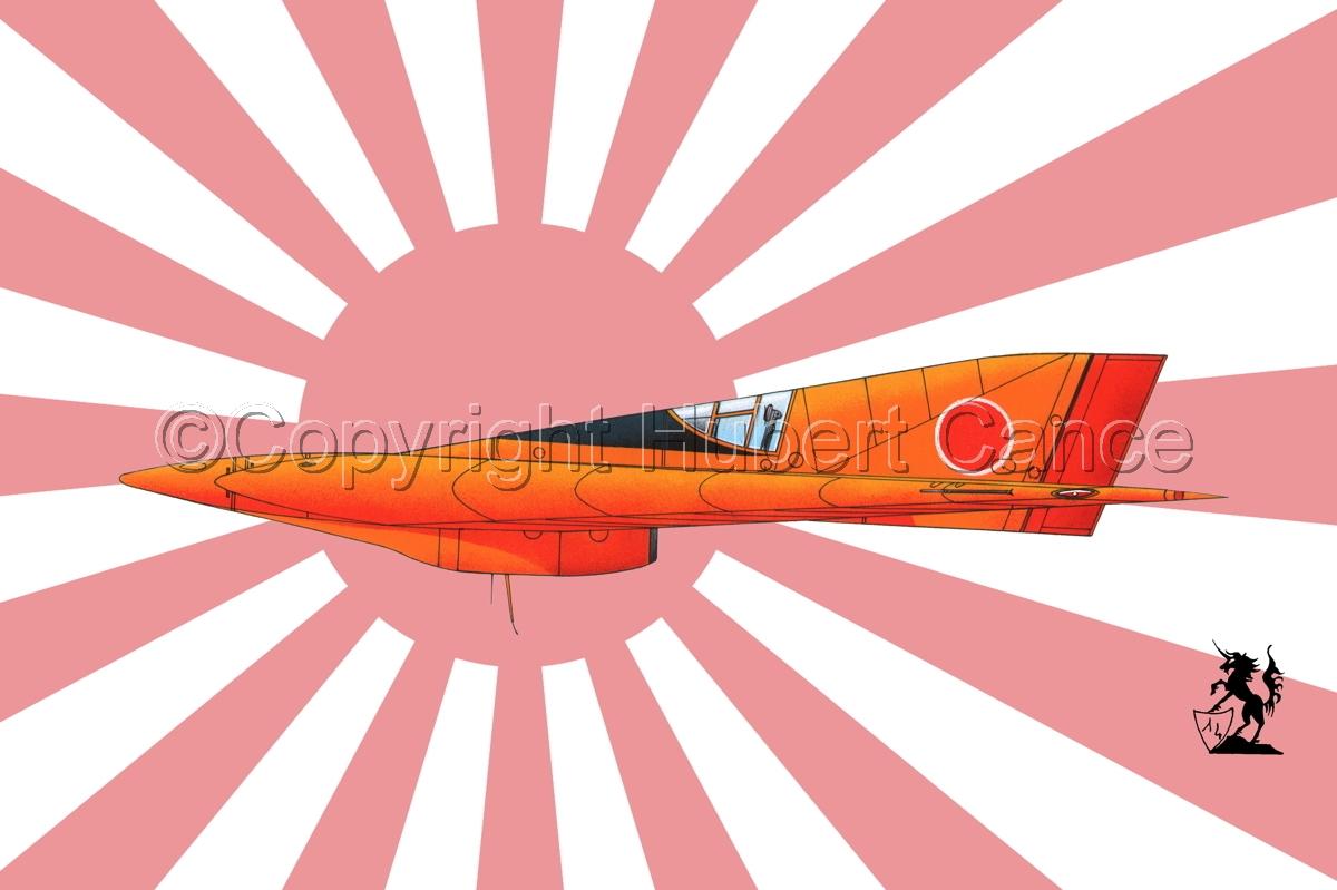 Horten Ho XIIIb Japanese Trainer (Flag #2) (large view)