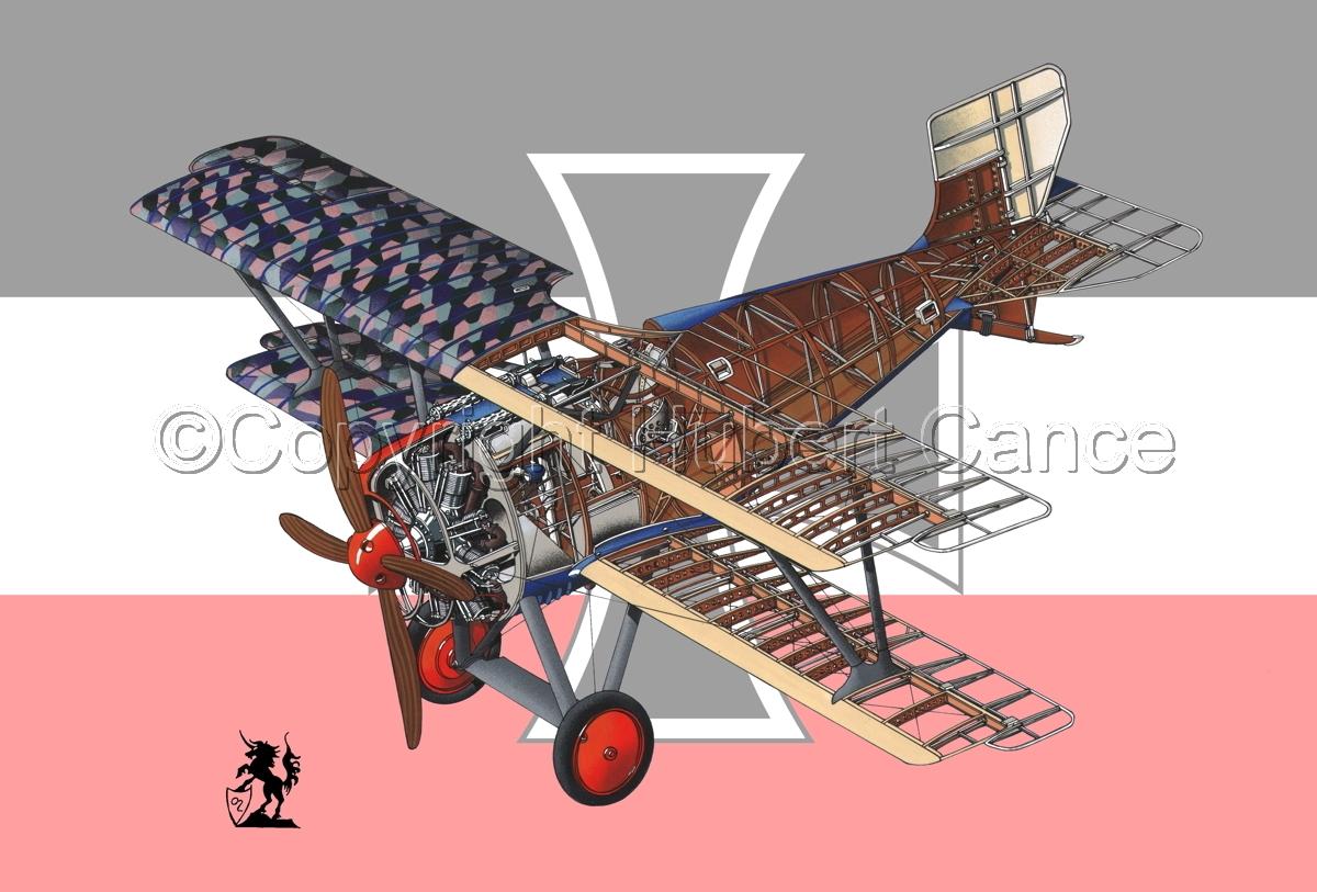 Siemens Schuckert D.III (Flag #2) (large view)
