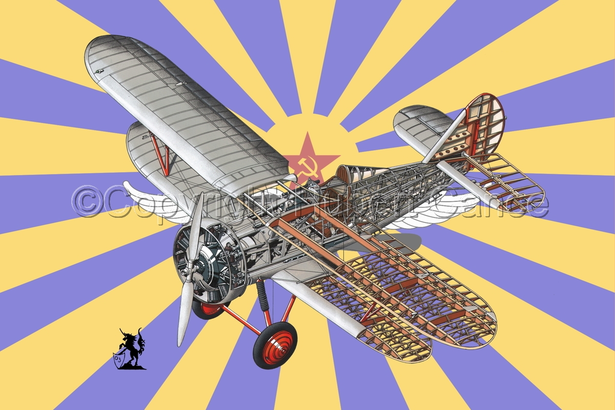 Polikarpov I.5 (Flag #2) (large view)