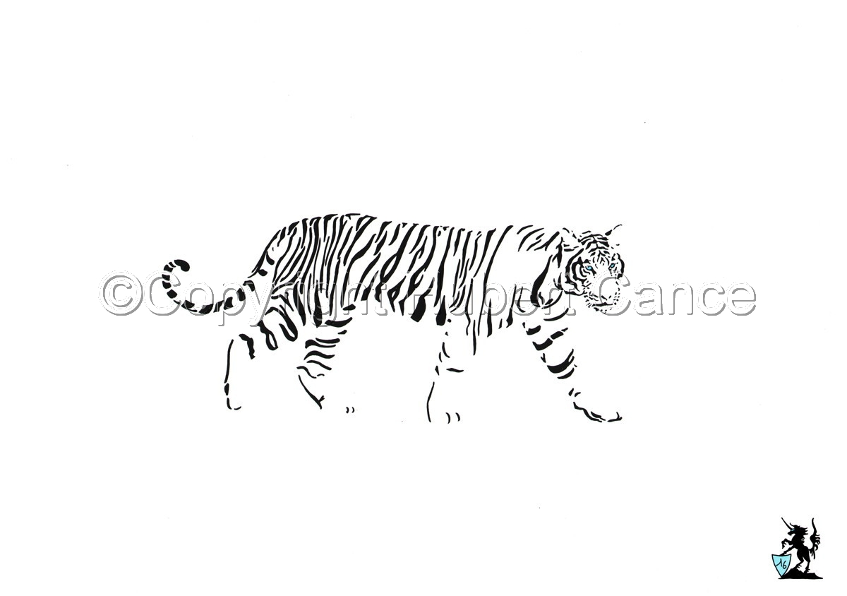 Black, White and... Blue: White Siberian Tiger (large view)