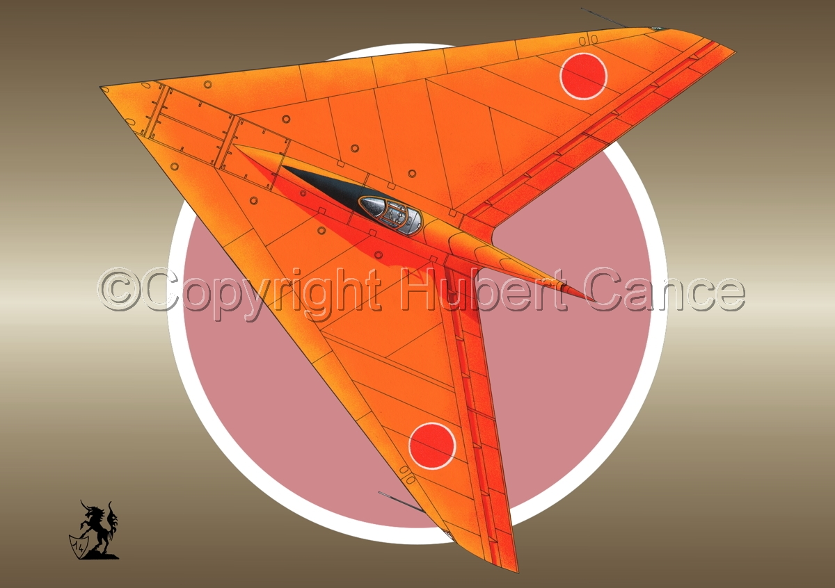 Horten Ho XIIIb Japanese Trainer Upper View (Roundel #1) (large view)
