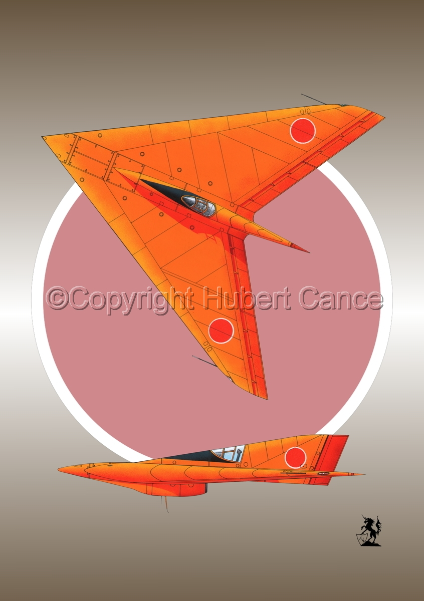 Horten Ho XIIIb Japanese Trainer 2-Views (Roundel #1) (large view)