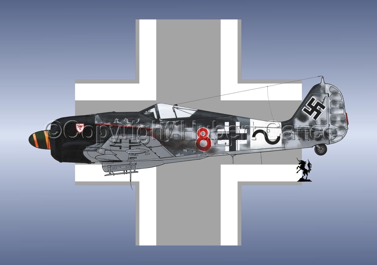 Focke-Wulf Fw 190A-8/R-2 (Roundel #1) (large view)