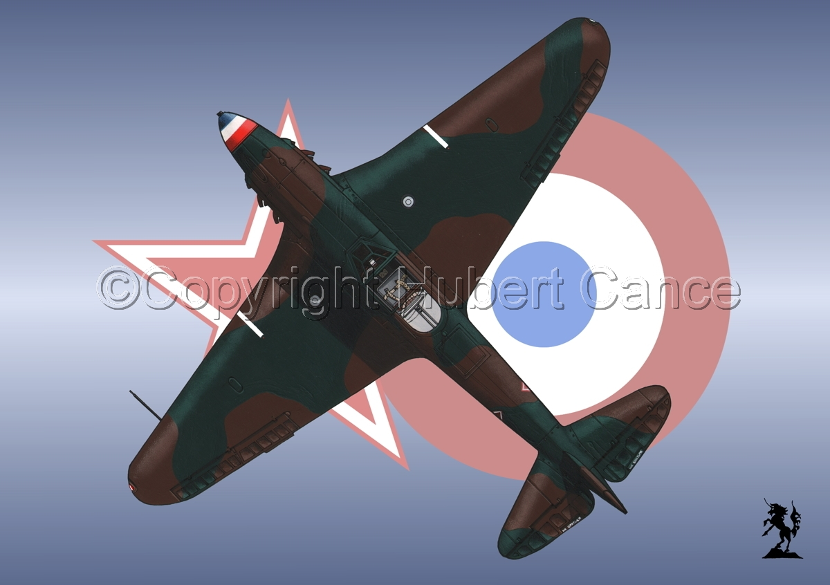 Yakovlev Yak-9D (Upper) (Roundel #3) (large view)