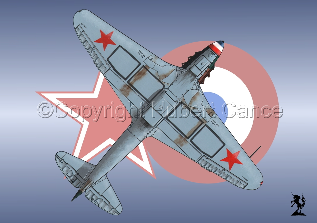 Yakovlev Yak-9D (Under) (Roundel #3) (large view)