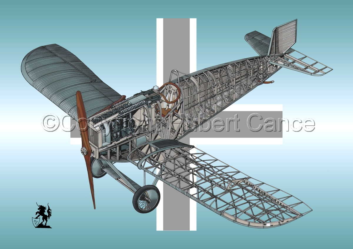 Junkers D.1 (Roundel #1) (large view)