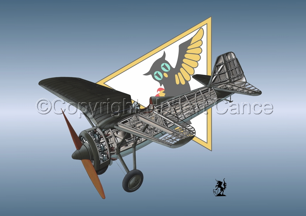 PZL P.7a (Insignia #7) (large view)