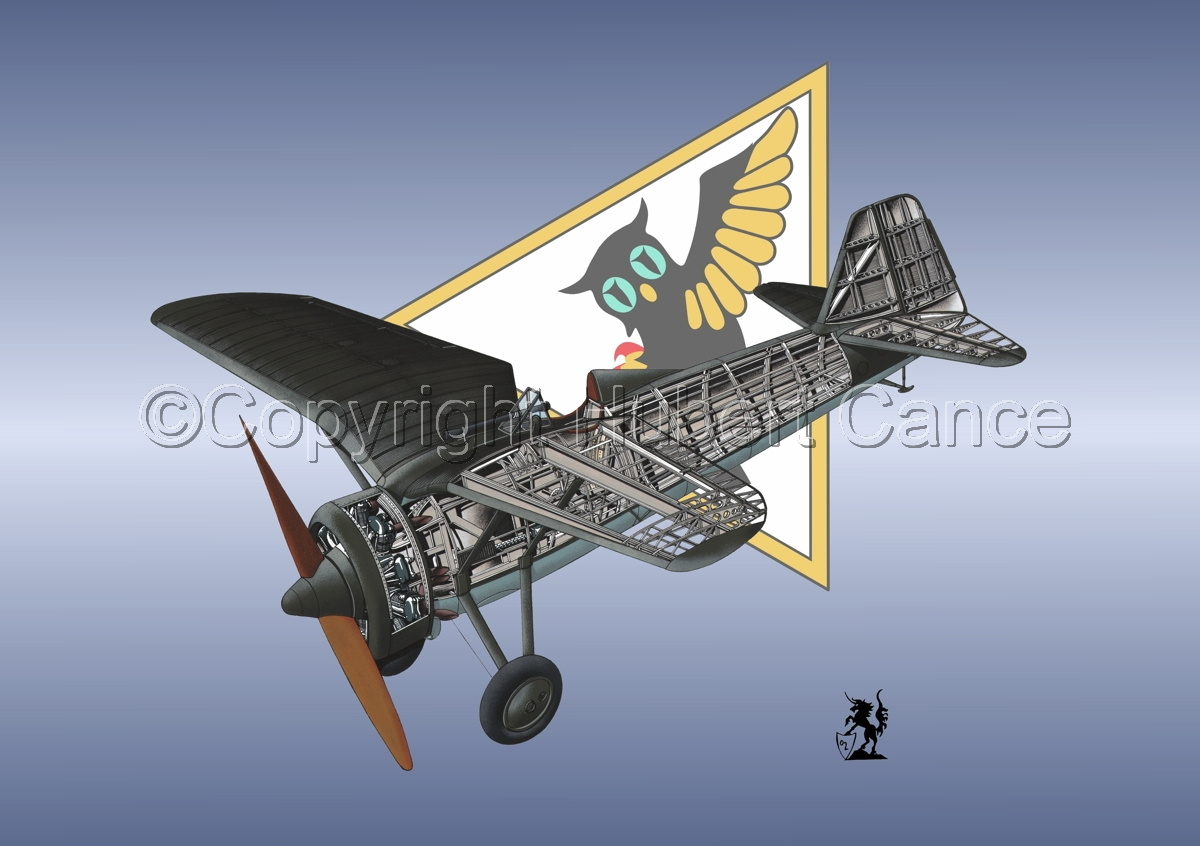 PZL P.7a (Insignia #8) (large view)