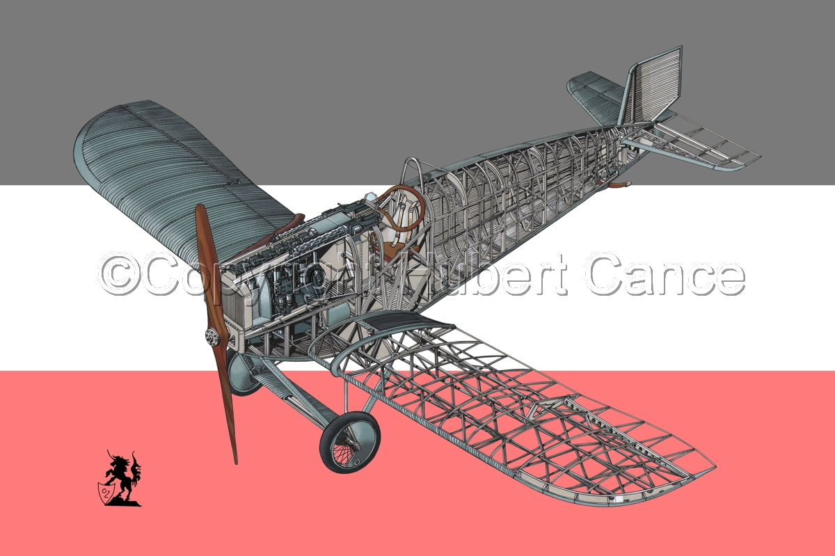Junkers D.1 (Flag #1) (large view)