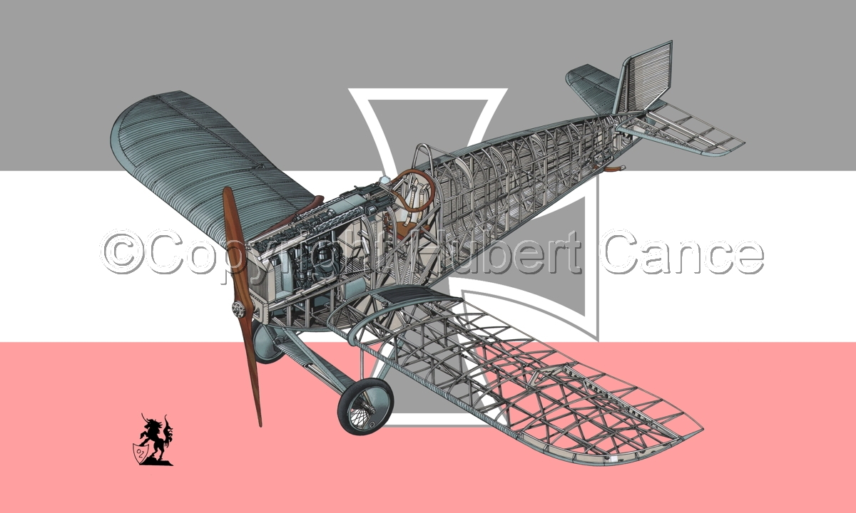 Junkers D.1 (Flag #2) (large view)