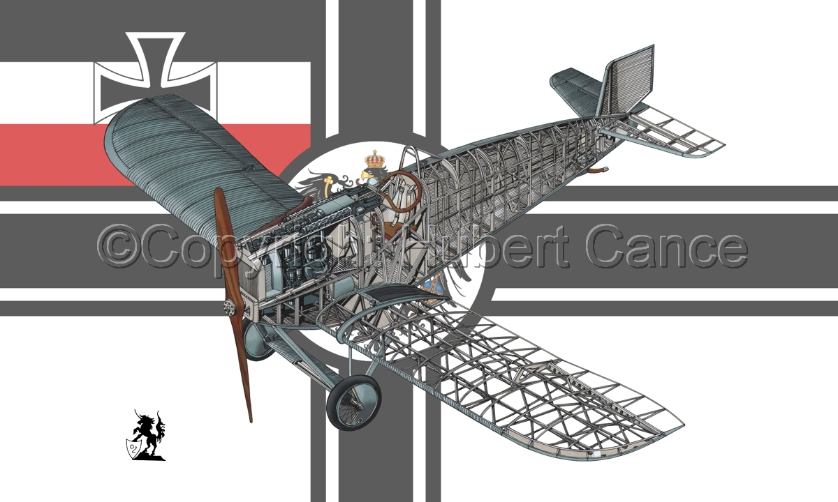 Junkers D.1 (Flag #3) (large view)