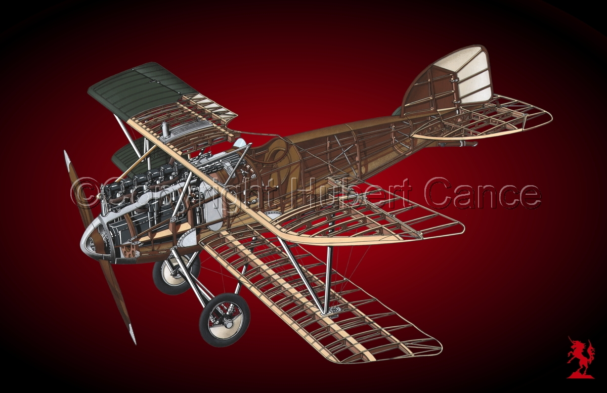 Albatros D.III #1.4 (large view)