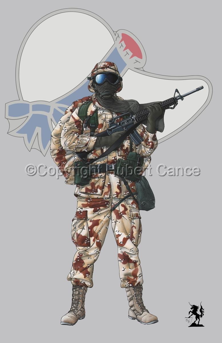 US GI in Iraq (Gulf War 1) (Insignia #8.1) (large view)