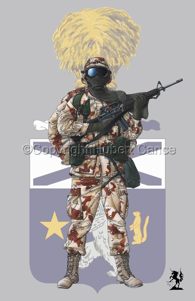 US GI in Iraq (Gulf War 1) (Insignia #9) (large view)
