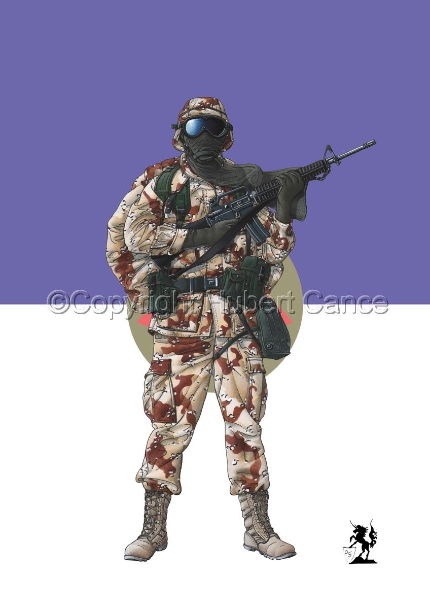 US GI in Iraq (Gulf War 1) (Flag #2.1) (large view)