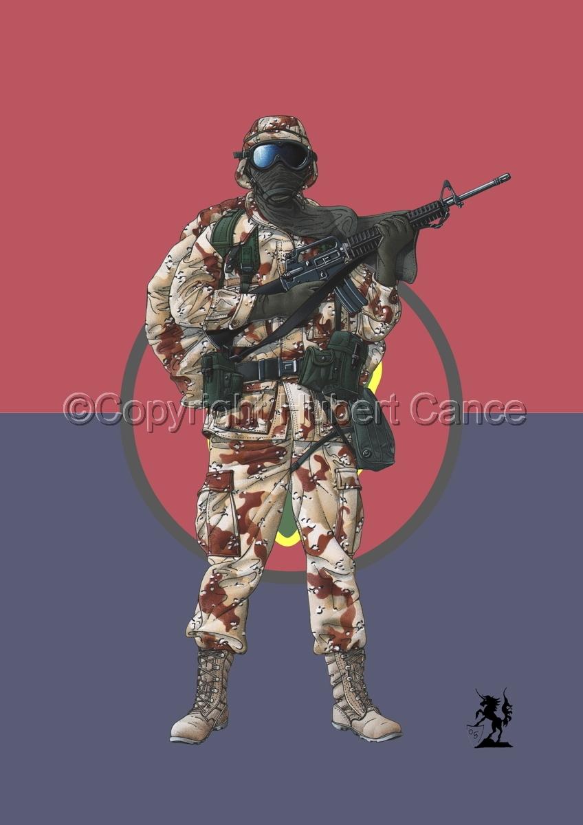 US GI in Iraq (Gulf War 1) (Flag #4.1) (large view)