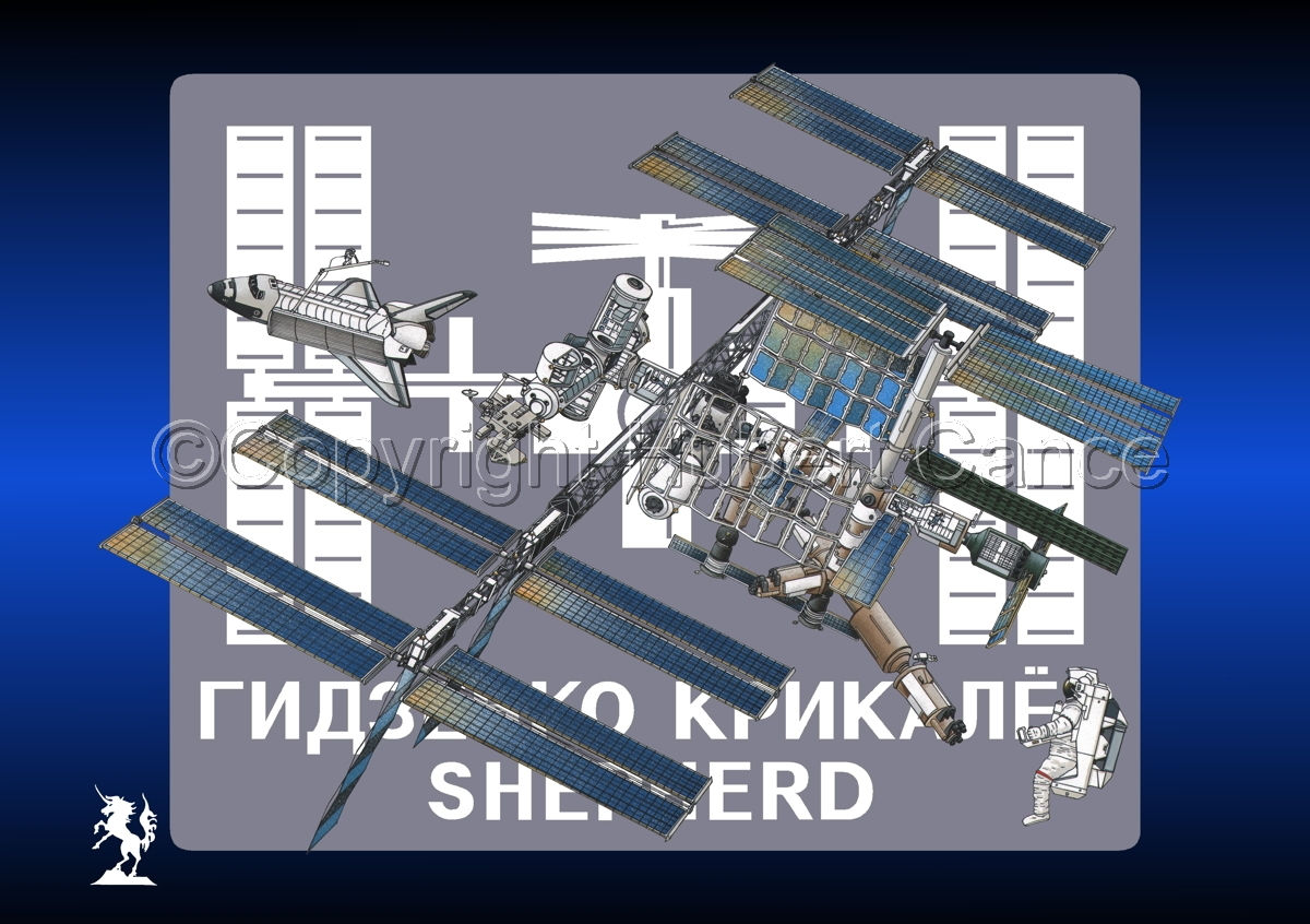 International Space Station (Insignia #4) (large view)