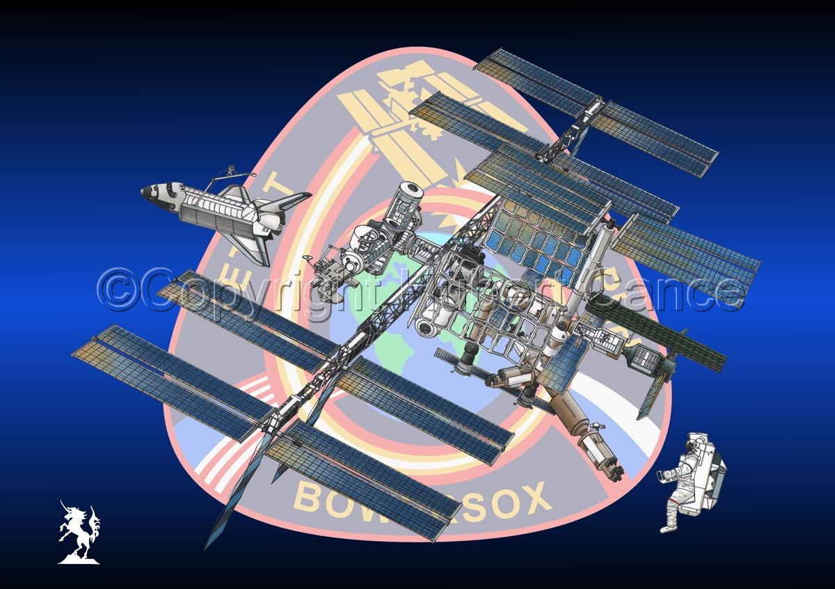 International Space Station (Insignia #9) (large view)