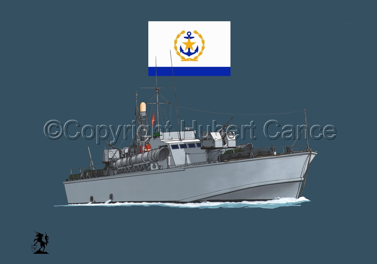 North Vietnamese P6 Torpedo Boat (Flag #2.2) (large view)