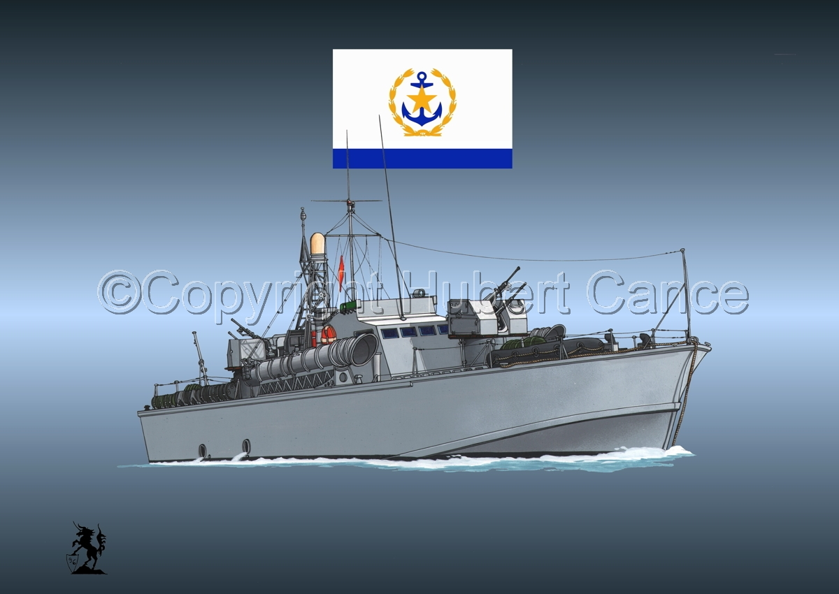 North Vietnamese P6 Torpedo Boat (Flag #2.4) (large view)