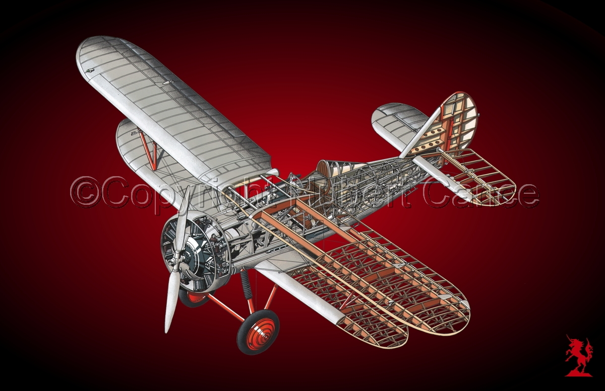 Polikarpov I.5 #4 (large view)